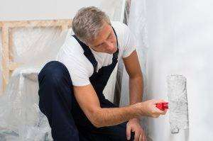 Professional Painters Maple Grove