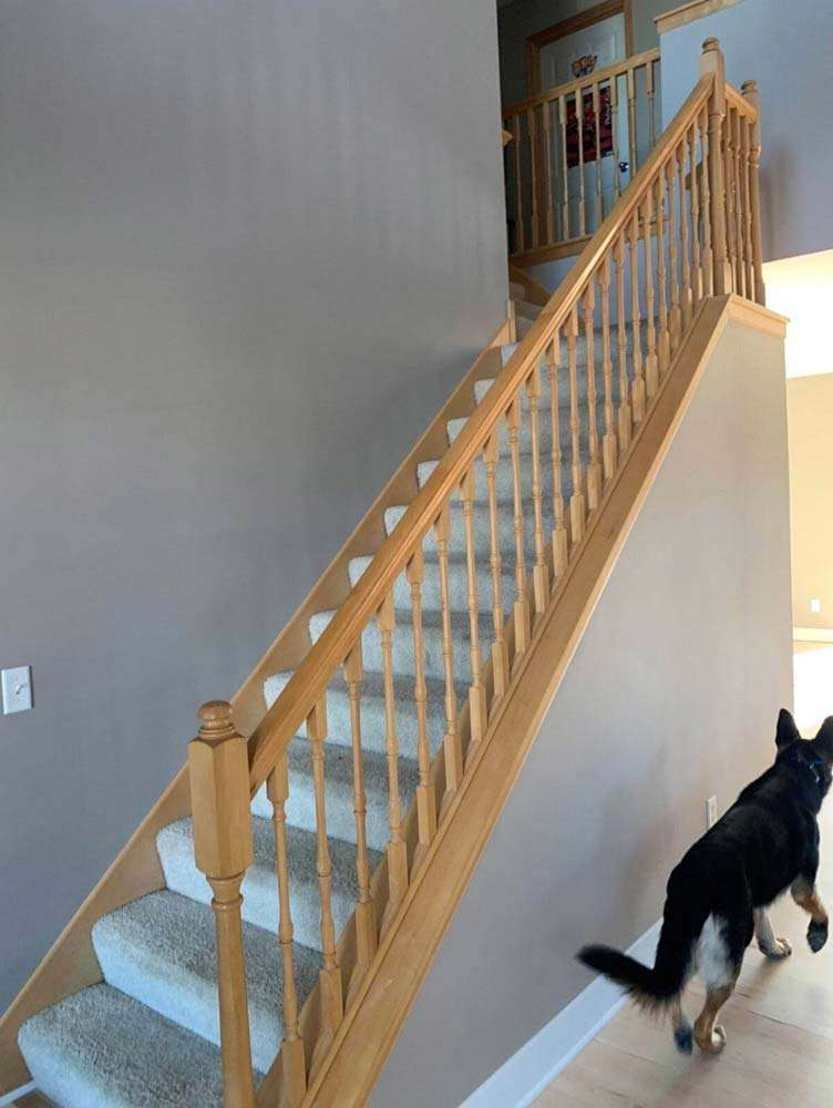 Before Image - Stair project from DuraPro Painting.